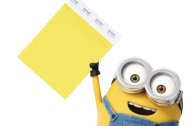 aceptamos minion como color 35310