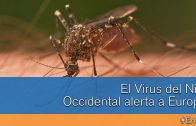 El Virus del Nilo Occidental alerta a Europa #En60""