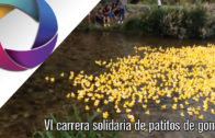 VI carrera solidaria de patitos de goma
